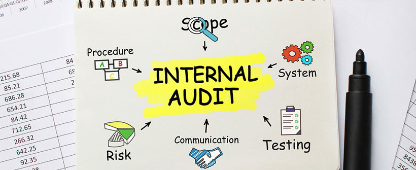 Internal Audit Performance Audit Program Evaluations